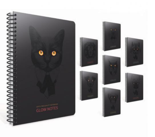 Gıpta Glow Notes Spiralli Karton Kapak Defter 8'li Set
