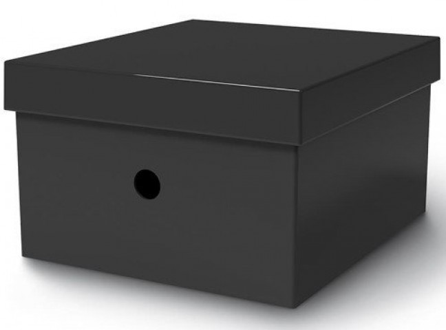 Mas Rainbow Çok Amaçlı Karton Kutu 27 x 27 x 17 cm Siyah T6432